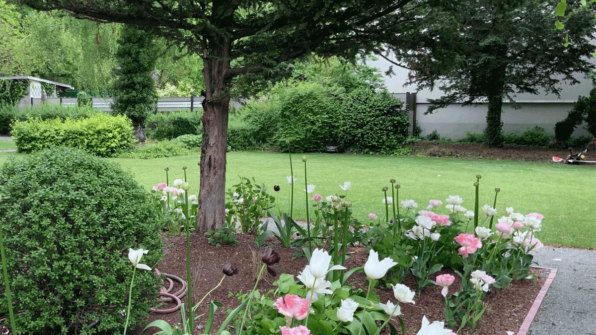 1_Blumengarten