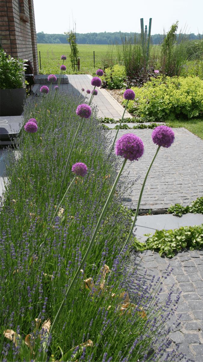 1_Gartenwege