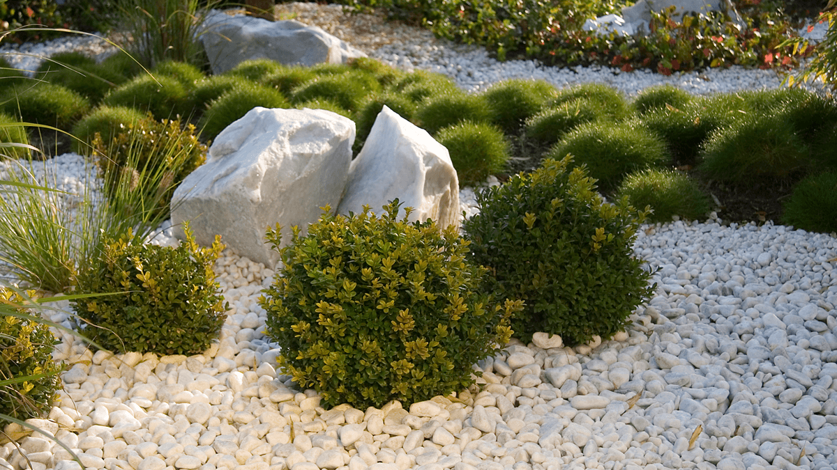 Pflanzung-in-Splitt