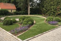 1_Garten-bepflanzung