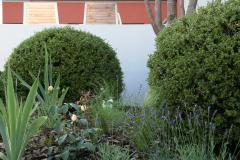 Garten-bapflanzung