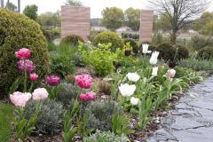 Garten-bepflanzung