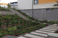 Treppenanlage-zum-Eingang